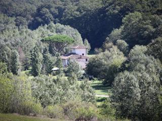 Villa Valle, Tuscany luxury - Palaia vacation rentals