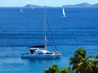 Nice 4 bedroom Road Town Yacht with Deck - Road Town vacation rentals