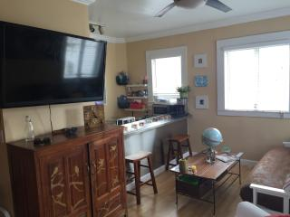 South Beach Fully Furnished 3 Blocks from beach - South Miami vacation rentals