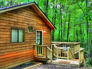 Cute and Cozy - Helen vacation rentals