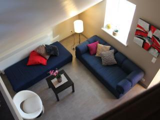 Loft d'Anna Appartement dans les combles - Sarrebourg vacation rentals