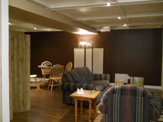 Cozy Port Sydney Studio rental with Internet Access - Port Sydney vacation rentals