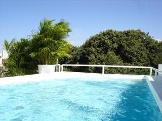 BEAUTIFUL COLONIAL HOUSE, OLD CITY - Cartagena vacation rentals
