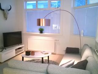 Luxury apartm. with Rental Car Incl. - Reykjavik vacation rentals