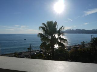 FRENCH RIVIERA, CANNES, SEAVIEW, GARAGE - Cannes vacation rentals
