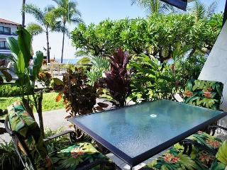 Casa de Emdeko 136 AC Included! - Kailua-Kona vacation rentals