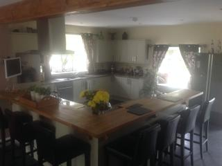 Jonestar Holiday House - Bronwydd vacation rentals