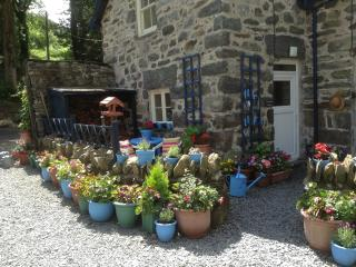 Gorgeous Country Cottage Snowdonia National Park - Dolgellau vacation rentals