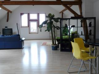 Romantic 1 bedroom Gite in Ottrott - Ottrott vacation rentals