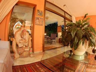 Treetops Penthouse Marbella - Alcazaba - Puerto José Banús vacation rentals