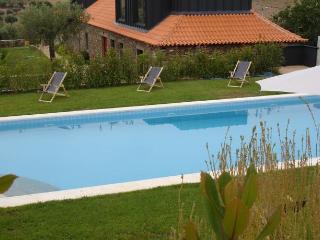 Quinta dos Avidagos - Mirandela - Mirandela vacation rentals
