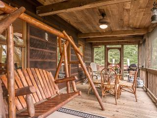 Jacob's Ridge Hideaway - A beautiful pet friendly cabin rental with scenic views near Blue Ridge - Blue Ridge vacation rentals
