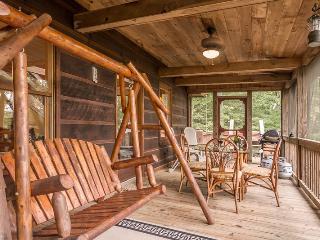 Jacob's Ridge Hideaway - A beautiful pet friendly cabin rental with scenic views near Blue Ridge - Blue Ridge vacation rentals