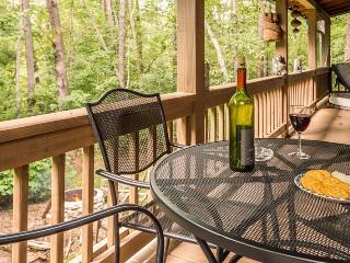 Moose Lodge - enjoy simple pleasures - Blue Ridge vacation rentals