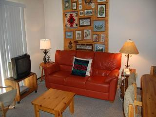 2 bedroom Apartment with Fitness Room in Fraser - Fraser vacation rentals
