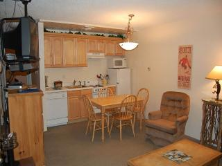Hi Country Haus Unit 315 - Winter Park vacation rentals
