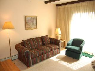 Lovely 2 bedroom Condo in Fraser with Fitness Room - Fraser vacation rentals