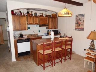 Comfortable 1 bedroom Condo in Winter Park - Winter Park vacation rentals