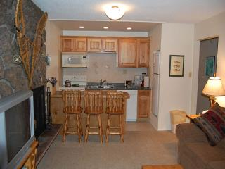 Lovely Condo with DVD Player and Fireplace - Winter Park vacation rentals