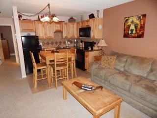 1 bedroom Apartment with DVD Player in Winter Park - Winter Park vacation rentals