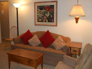 Hi Country Haus Unit 705 - Winter Park vacation rentals