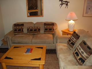 Lovely 2 bedroom Fraser Apartment with Fitness Room - Fraser vacation rentals