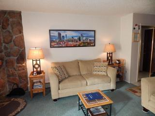 Nice Fraser vacation Condo with Fitness Room - Fraser vacation rentals