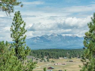 Tree House - Pagosa Springs vacation rentals