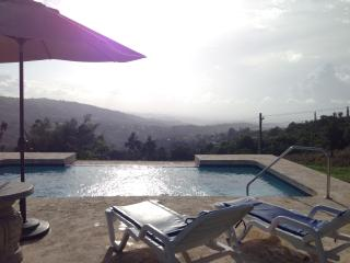 Estancia El Yunque, National Rain Forest - El Yunque National Forest Area vacation rentals