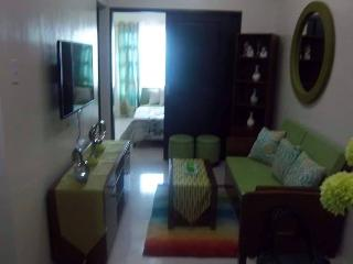 Convenient Fully Furnished COndo with Mall - Cebu City vacation rentals