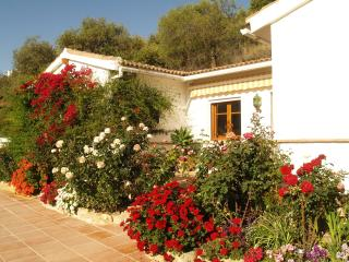 Charming Finca with Internet Access and Satellite Or Cable TV - Monda vacation rentals