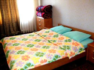 Safe and Cozy Home in Bishkek - Bishkek vacation rentals