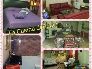 1 bedroom Bed and Breakfast with Internet Access in Ciampino - Ciampino vacation rentals