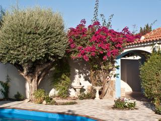 Lovely Villa with Internet Access and A/C - Fortuna vacation rentals