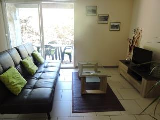 Nice Condo with Internet Access and Trampoline - Fanjeaux vacation rentals