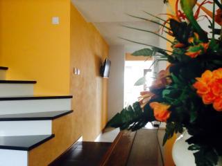 VillaMoura: no centro de Côja - Arganil vacation rentals