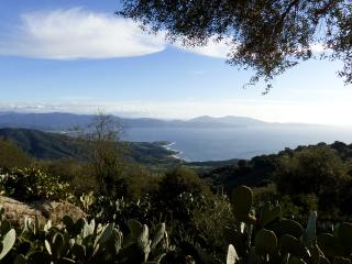 Casa - Cargese vacation rentals