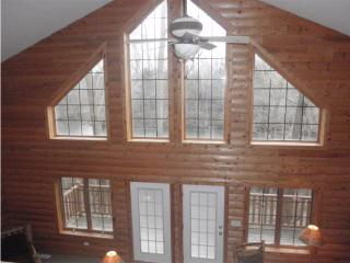 Grand Bear Resort Luxury Cabin - Utica vacation rentals