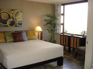 DELUXE condo (for 2) * FREE PARKING * FREE WiFi !! - Honolulu vacation rentals