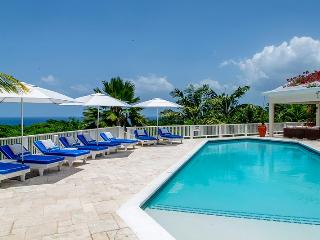 6 bedroom Villa with Internet Access in Hope Well - Hope Well vacation rentals