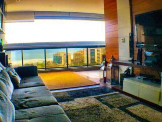 Perfect 3 bedroom Vacation Rental in Rio de Janeiro - Rio de Janeiro vacation rentals