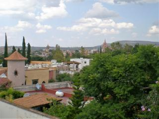 Comfortable Condo with Internet Access and Satellite Or Cable TV - San Miguel de Allende vacation rentals