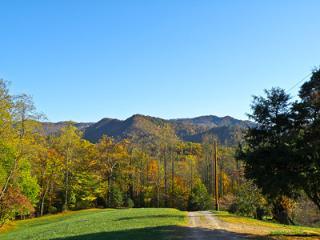 Buckeye Branch Cabin - Glorious Views - Franklin vacation rentals