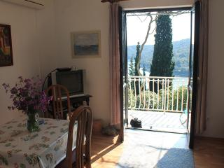 A sea view house with a large garden - Molunat vacation rentals