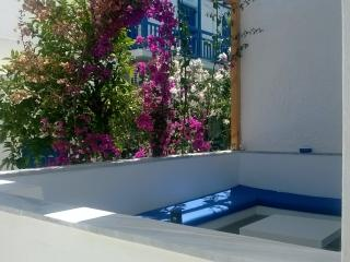 Beautiful 8 bedroom Naxos City Bed and Breakfast with Internet Access - Naxos City vacation rentals
