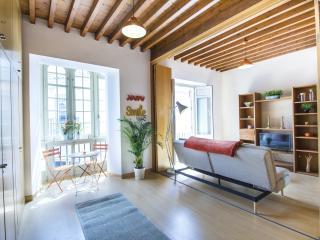 Luminous 1 bedroom Malaga - Malaga vacation rentals