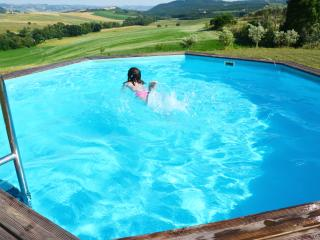 Farmhouse apartment near Scansano and Saturnia - Scansano vacation rentals