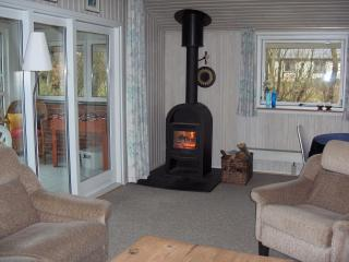 Summer house by Limfjord Denmark. Near the beach - Vinderup vacation rentals