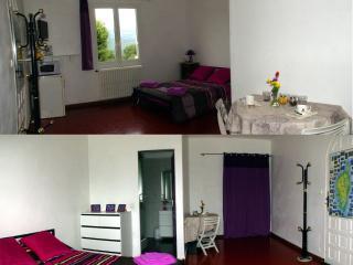 gde chambre aménagée 21m² entiérement indépendante - Ucciani vacation rentals