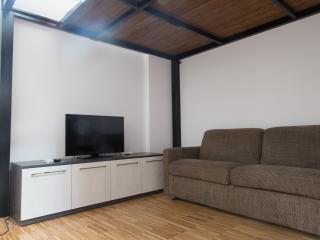 Mister House - Loft Isola - Milan vacation rentals